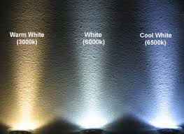 cool white lights color difference white cool white and warm white