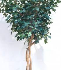 buy now on sale canadian maple silk tree 10 foot custom made on