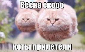 Russian Memes - abstract russian memes from the year abstract russian memes