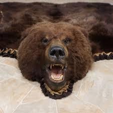 Reindeer Hide Rug Brown Bear Rug For Sale Roselawnlutheran