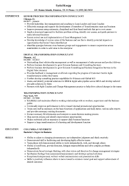 transformation consultant resume samples velvet jobs