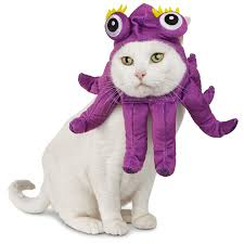 Pet Cat Halloween Costumes The Cutest Pet Halloween Costumes For Cats And Dogs