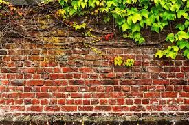 old brick garden wall stock photo image 49521254