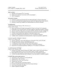 hybrid resume samples 7 hybrid resume templates emt combinationhybrid template templat