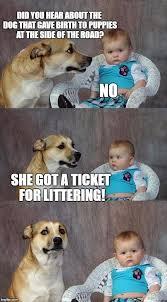 Birth Memes - dad joke dog meme imgflip