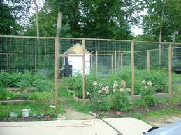 chicken coop stuff is this blog on