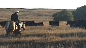 Sale Barns In Nebraska Farm Ranch Properties For Sale In Wyoming And Nebraska Presented