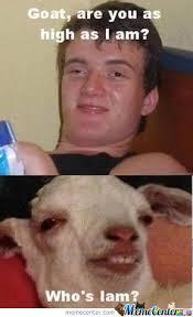 Meme Stoner - stoner goat by mali1010 meme center