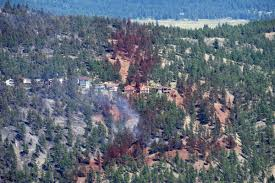 Prince George Bc Wildfire by Ottawa Sending Military Aircraft To Help Battle B C Wildfires