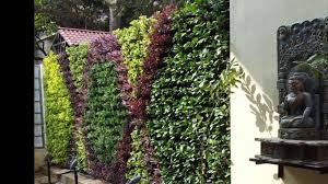 professionals in vertical garden bangalore youtube