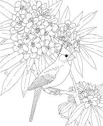 coloring pages u0026 pictures imagixs stained glass and mosaic eye