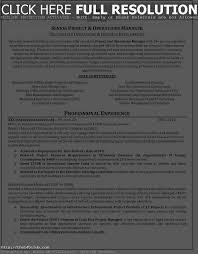 it professional resume templates it professional resume writers starengineering