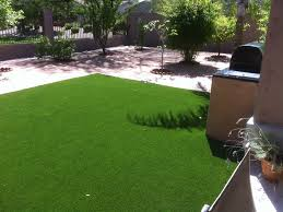 Backyard Ideas For Dogs Installing Artificial Grass Cave Creek Arizona Dog Grass