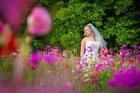asheville wedding photographer mozingo photography