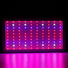 epistar led grow light 1pcs newest design full spectrum 300w epistar led grow light for