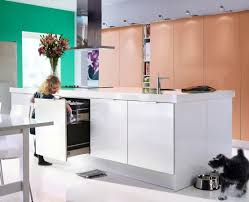 Kitchen Designer Ikea Ikea 2010 Dining Room And Kitchen Designs Ideas And Furniture