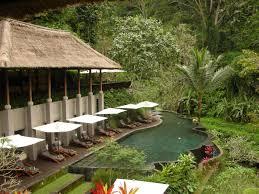 maya ubud hotel ubud bali indonesia beautiful infinity pool