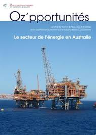 chambre r rig oz pportunités by australian chamber issuu