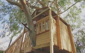 budget to build a backyard treehouse simple