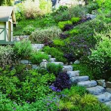 Steep Sloped Backyard Ideas 60 Best Slope Downhill Garden Images On Pinterest Backyard