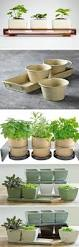 best 25 indoor pots and planters ideas on pinterest indoor