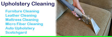 Upholstery In Fort Lauderdale Carpet Cleaning Fort Lauderdale Pro Carpet Cleaning