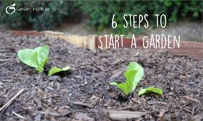 earth month with the gerson institute 6 steps to start a garden