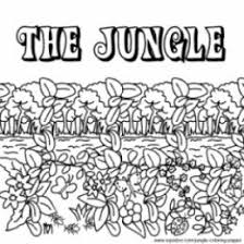 10 images of jungle habitat coloring pages deciduous forest