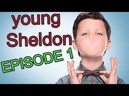 Meme Young - meme young sheldon in a nut shell youtubehaiku