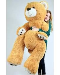 big teddy don t miss this deal big plush teddy five