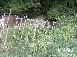 Garden Trellis Netting Build An Inexpensive Trellis For Your Small Garden