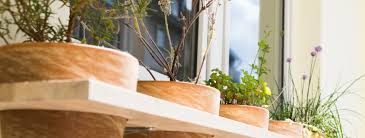 krã uter balkon chestha balkon design kräutergarten