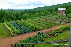 we hope that the vegetable garden will capitolmunity groundworks