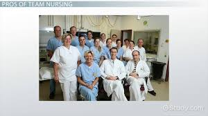Example Of Resume Of A Teacher by Roles And Functions Of The Nurse Video U0026 Lesson Transcript