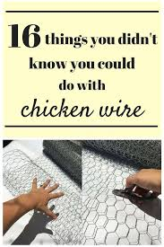 16 things you didn u0027t know you could do with chicken wire chicken