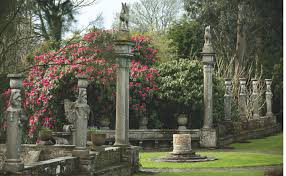 native irish plants 10 garden ideas to steal from ireland gardenista