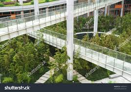 modern building indoor corridor bamboo garden stock photo 19963918