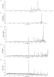 molecules free full text a high content screening assay to