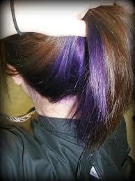dye bottom hair tips still in style purple hair underneath dark on top google search hair ideas