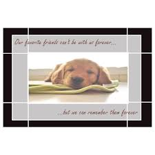 sympathy for loss of dog 7 free sympathy cards for dog owners send to comfort