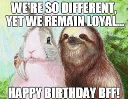 Happy Birthday Best Friend Meme - happy birthday best friend memes wishesgreeting