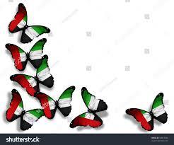 White Flag Gif Uae Flag Butterflies Isolated On White Stockillustration 98813348
