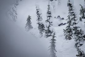 how to plan a cat skiing trip first tracks online ski magazine