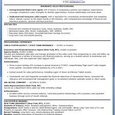 100 Salesman Resume Samples Resume Template It Sales
