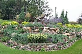 giardini rocciosi in ombra come realizzare un giardino roccioso i consigli per un risultato