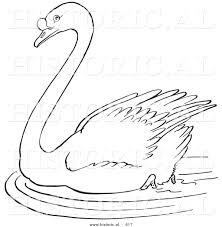 historical vector illustration of a swimming swan in a pond