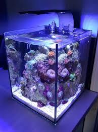 best fan for aquarium 60 best ecoxotic ecopico aquarium images on pinterest fish