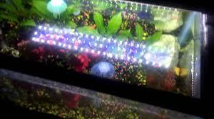 30 led aquarium light mingdak led aquarium light review youtube