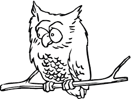 owl coloring pages for adults bestofcoloring coloring book 5