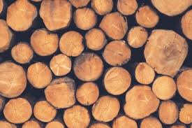 pile of wood pictures free images on unsplash